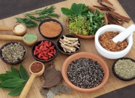 Journée découverte de la naturopathie samedi 4 mai