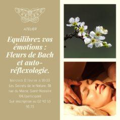 """Atelier """"Fleurs de Bach et auto-réflexologie pour contrer le stress et maîtriser ses émotions"""" mercredi 12 février à 18h30"""